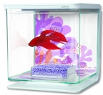 Akvárium Betta Marina Kit Flower (2l)